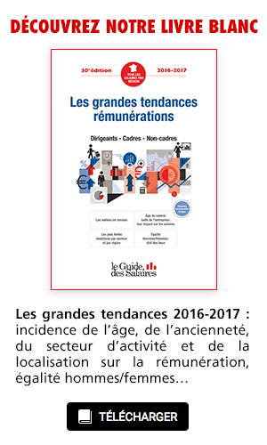 Encart-Livre-Blanc-SiteGDS_300-500px